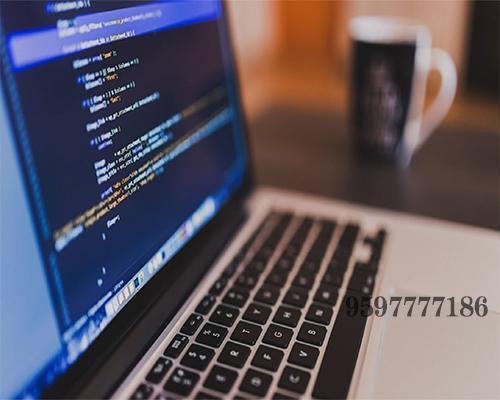 Web Designing Company in Alapakkam